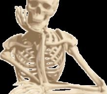 6月3日(日) 10:00~13:00 機能解剖学をもう一度学び直したい人向けの『ムーブメント解剖学』講座 〜上半身① 肩甲骨編〜