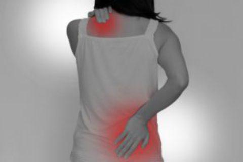 肩こり・腰痛の原因は腸内環境が影響しているかも?
