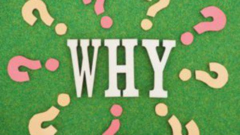 肌と腸離れているけど、密接な関係であるのは何故?